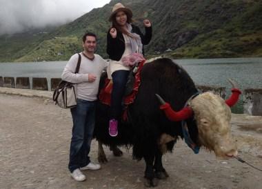 Riding a Yak, Himalayan Food, Eating in the Himalayas, Sikkim