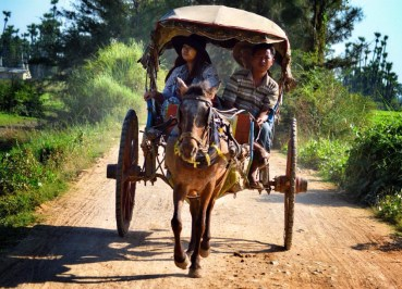 Horse and Cart at Innwa, Best mandalay day tour by taxi