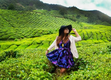 Cameron Highlands, Microsoft Lumia #makeithappen
