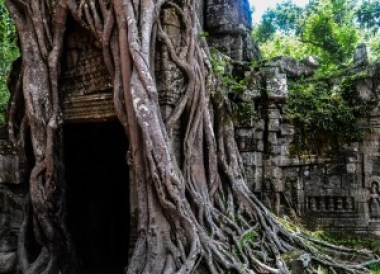 Entrance to Ta Prom, Introduction to Angkor Wat Two Day Tours