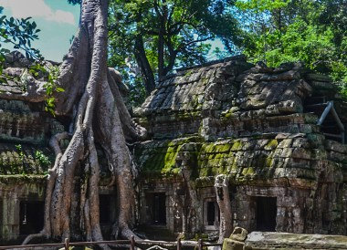 Ta Prohm, Introduction to Angkor Wat Two Day Tours