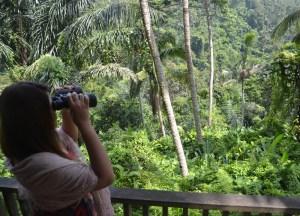River Valleys, Top 10 Ubud Resorts, Spas. Bali Hotels