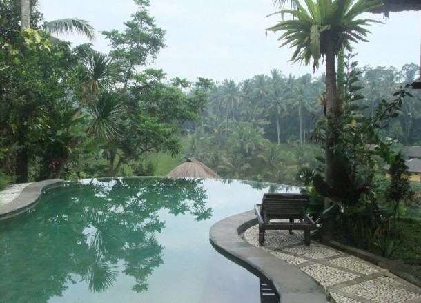 Graha Moding Pool, Top 10 Ubud Resorts, Spas. Bali Hotels