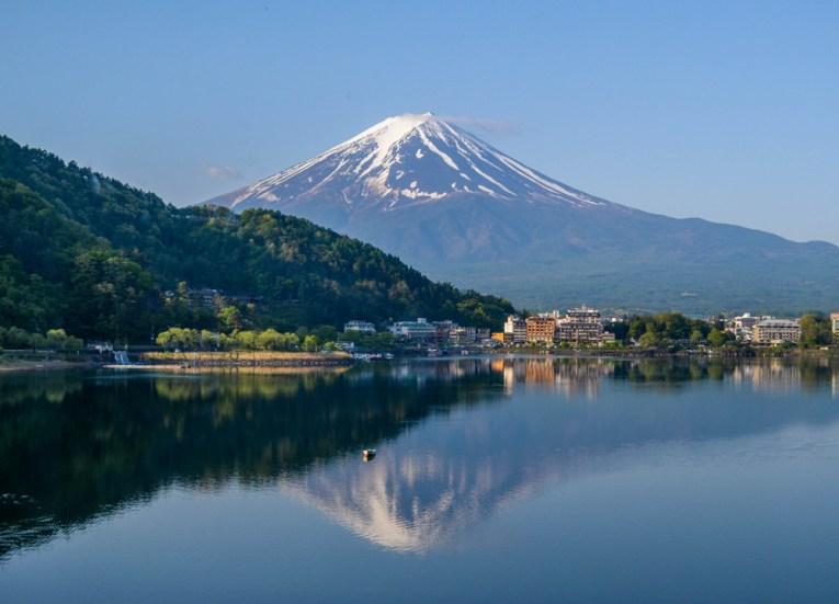 Morning, Travel to Mount Fuji Shibazakura Flower Festival