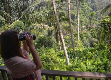 Bird Spotting, Best Hotel Views in Asia, Bali