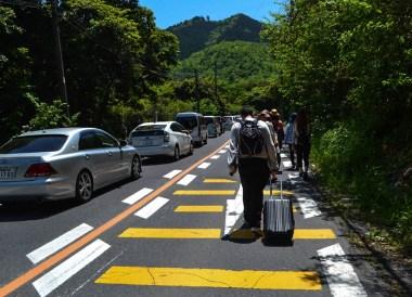 Walking to Travel to Kawachi Fuji Garden and Wisteria Tunnel