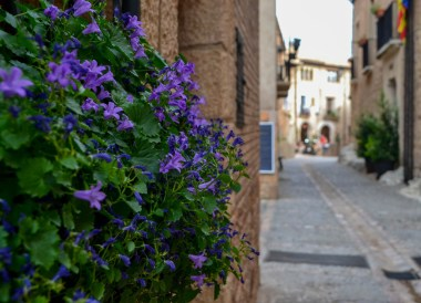 Streets of Alquezar Huesca, Northern Spain, Medieval Village