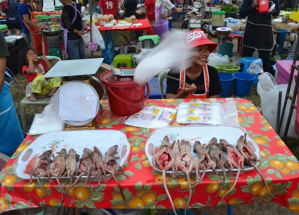 Local Isaan Night Market Nang Rong Thailand