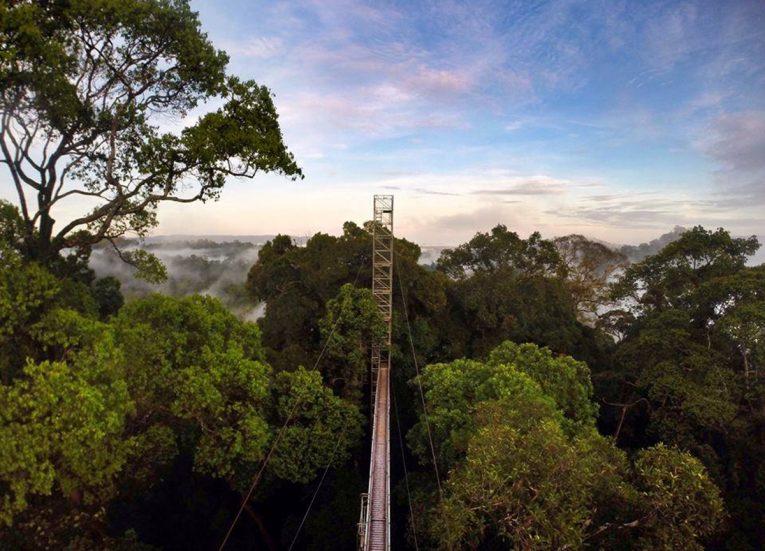 Canopy Walk Bridge, Ulu Ulu Resort, Temburong National Park Brunei Borneo
