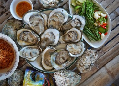 Oyster Farms in Chanthaburi Province, Travel in Eastern Thailand