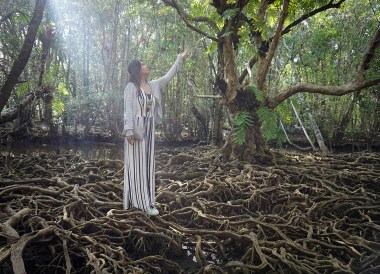 Exploring Mangrove Forests in Trat Province, Travel in Eastern Thailand