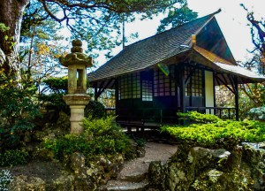 Japanese Garden Killdare, Day Trips from Belfast in Northern Ireland