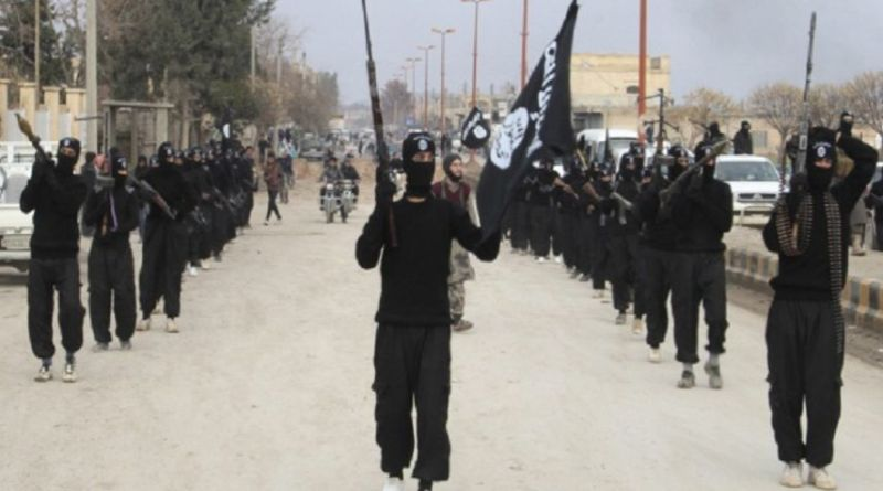 LLL-Live Let Live-Seven Islamic State terrorists apprehended over plots to destabilize Mosul