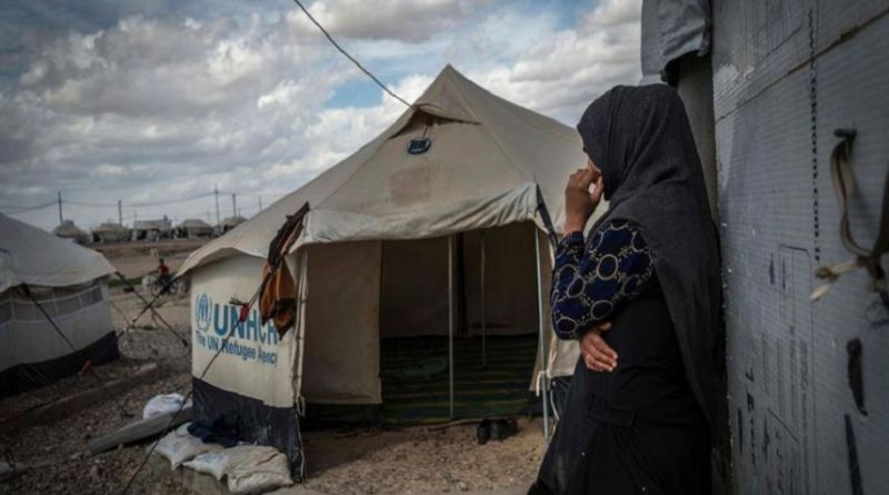 LLL - Live Let Live - Women suspected of ISIS links subjected to abuses in northern Iraq