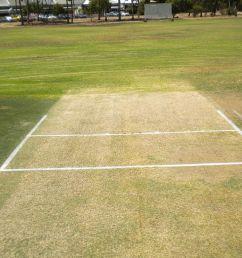 diagram of cricket field [ 1024 x 768 Pixel ]