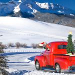 Pictures Of Classic Ford Trucks
