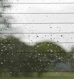 back window of a car [ 1414 x 1414 Pixel ]