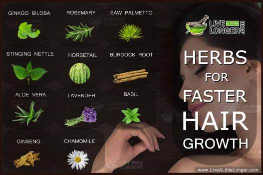 Image result for promote hair growth