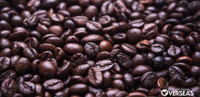 Resultado de imagen para mexico Geisha coffee