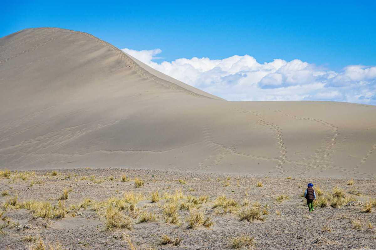 Sand Dunes Near Boise Idaho