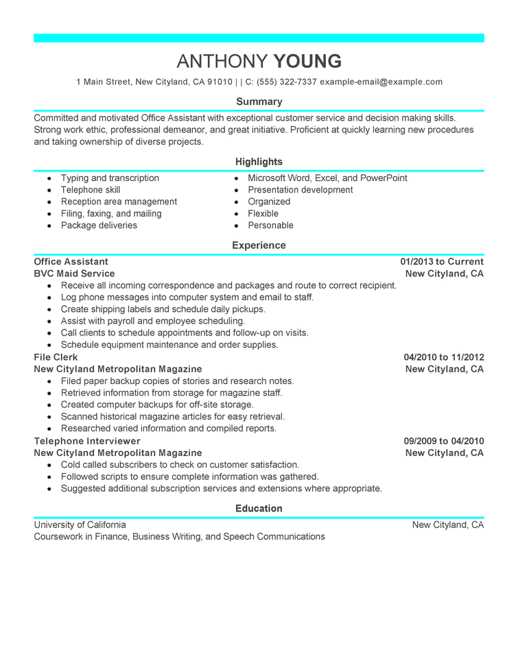 Professional Resume Example Free Resume Examples By Industry Job