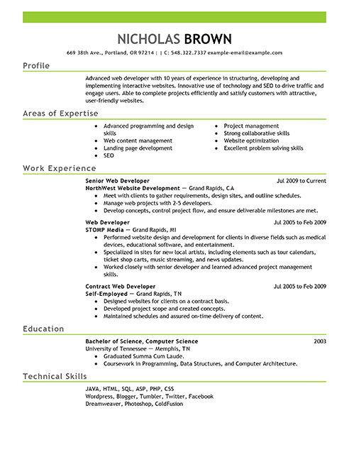 Best IT Web Developer Resume Example LiveCareer