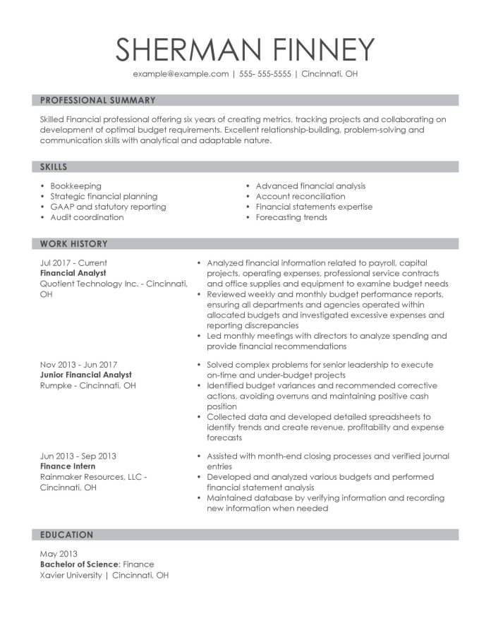 Professional Finance Resume Examples For 2021 Livecareer