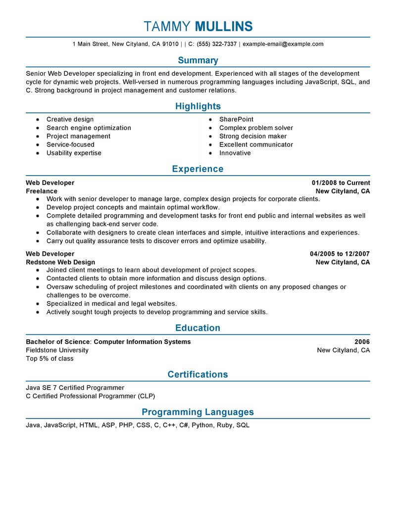 professional summary on resume examples web developer