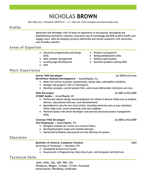 online web developer resume examples