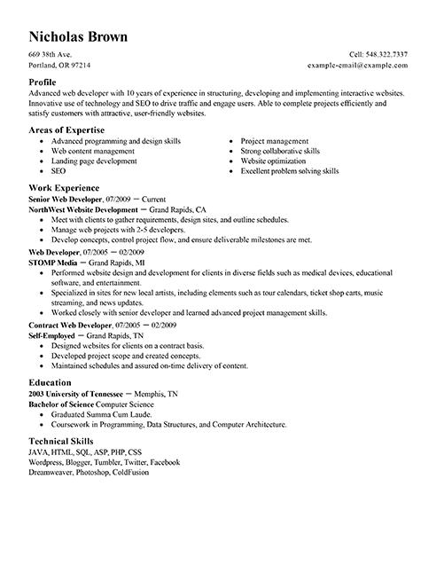 resume profile web developer