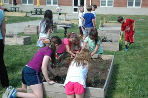 Live Civilly Spring Garden