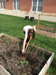 Live Civilly Spring Garden 2015