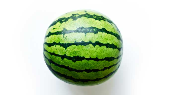 Picture of icebox watermelon on a white background