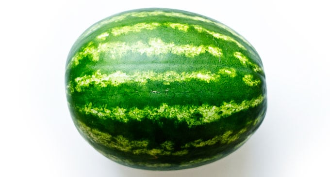 Picture of large picnic watermelon on a white background