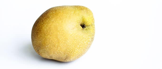 Asian pear on a white background