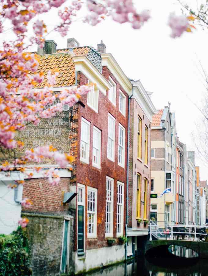 Biking About Delft