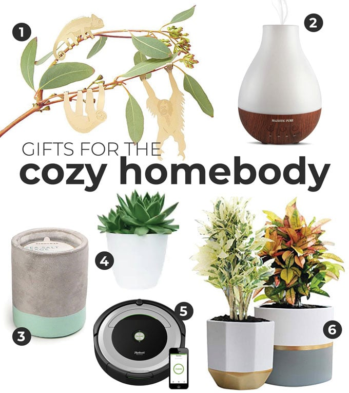 Gift ideas for cozy homebodies