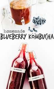 Blueberry kombucha in bottles