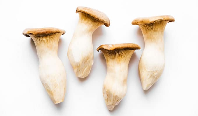 King oyster mushrooms on white background