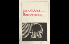 "Listen: Big Naturals & Anthroprophh ""Narwhallian Social Purge"""