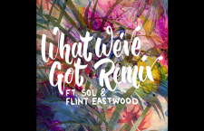 """Listen to Manatee Commune's Track """"What We've Got Remix feat. SOL & Flint Eastwood"""""""