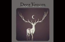 "Listen: Deer Venom ""All Right With Me"""
