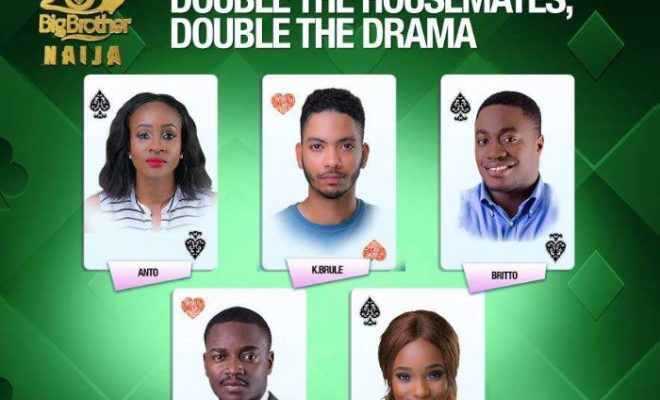 bbanaija evicted housemates