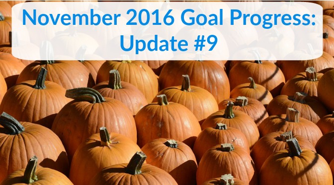 November 2016 Goal Progress: Update #9