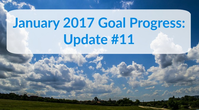January 2017 Goal Progress: Update #11