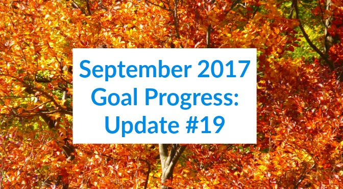 September 2017 Goal Progress: Update #19