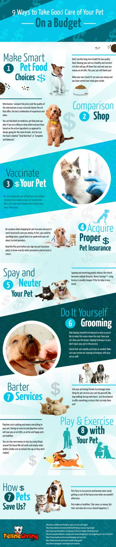 Simple Ways To Care For Your Pet On A Budget
