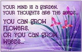 Your Mind Is Like A Garden.  Plant Seeds Of Positive Thinking