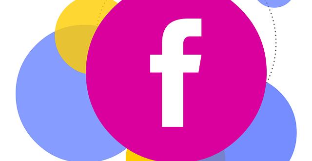Live in Belgium Facebook Feed