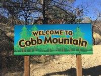 Cobb / Loch Lomond Homes for Sale
